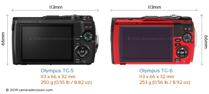 Olympus TG-5 vs Olympus TG-6 Camera Size Comparison - Back View