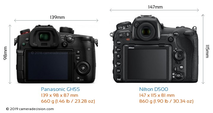 Panasonic GH5S vs Nikon D500 Camera Size Comparison - Back View