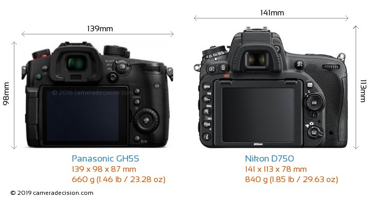 Panasonic GH5S vs Nikon D750 Camera Size Comparison - Back View