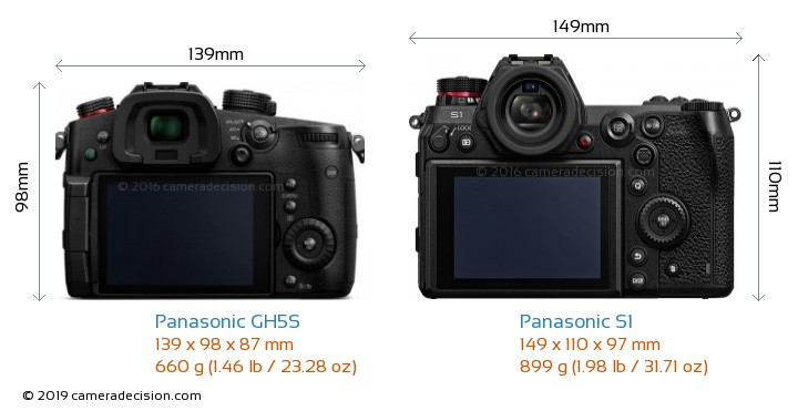 Panasonic GH5S vs Panasonic S1 Camera Size Comparison - Back View