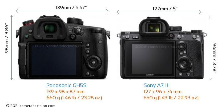 Panasonic GH5S vs Sony A7 III Camera Size Comparison - Back View