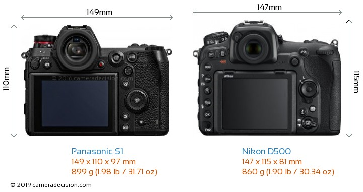 Panasonic S1 vs Nikon D500 Camera Size Comparison - Back View