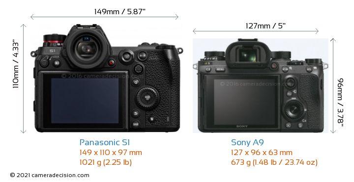 Panasonic S1 vs Sony A9 Camera Size Comparison - Back View