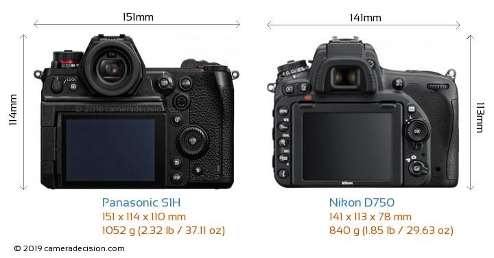 Panasonic S1H vs Nikon D750 Camera Size Comparison - Back View