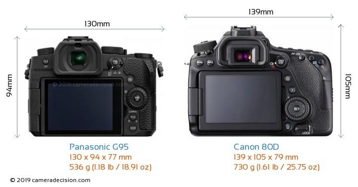 Panasonic G95 vs Canon 80D Camera Size Comparison - Back View