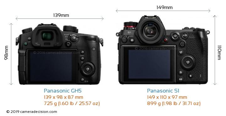 Panasonic GH5 vs Panasonic S1 Camera Size Comparison - Back View