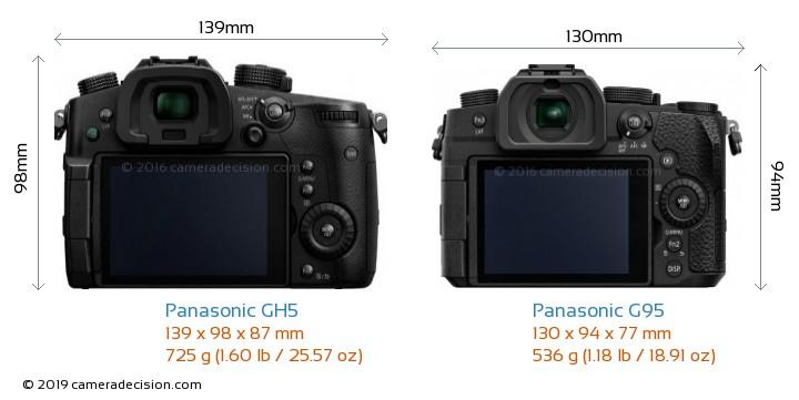 Panasonic GH5 vs Panasonic G95 Camera Size Comparison - Back View