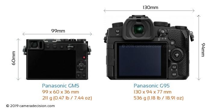 Panasonic GM5 vs Panasonic G95 Camera Size Comparison - Back View