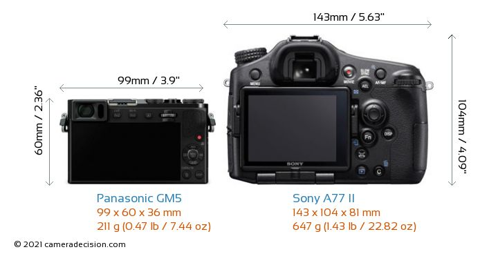 Panasonic GM5 vs Sony A77 II Camera Size Comparison - Back View