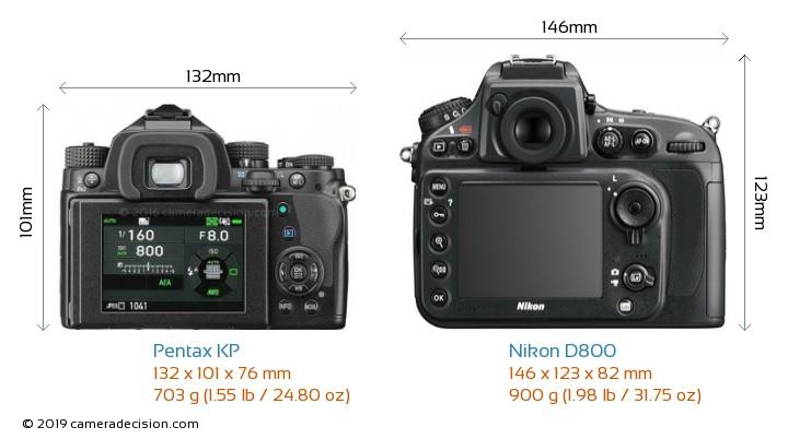 Pentax KP vs Nikon D800 Camera Size Comparison - Back View