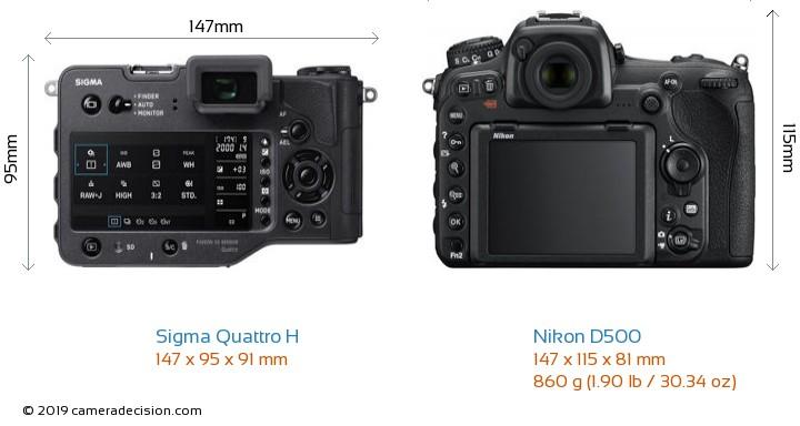 Sigma Quattro H vs Nikon D500 Camera Size Comparison - Back View