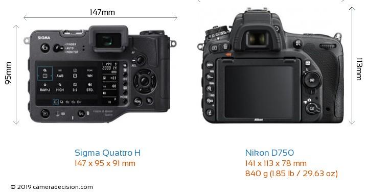 Sigma Quattro H vs Nikon D750 Camera Size Comparison - Back View