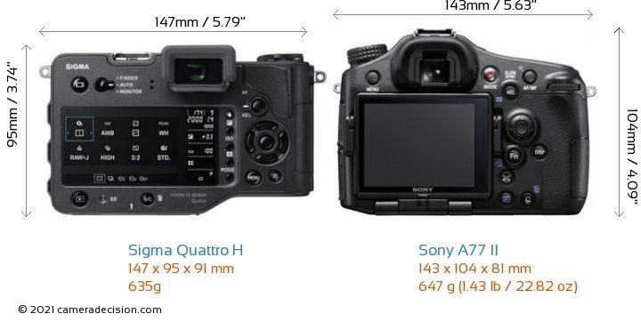 Sigma Quattro H vs Sony A77 II Camera Size Comparison - Back View