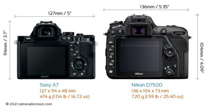 Sony A7 vs Nikon D7500 Camera Size Comparison - Back View