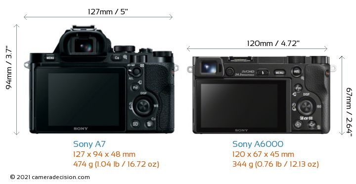 Sony A7 vs Sony A6000 Camera Size Comparison - Back View