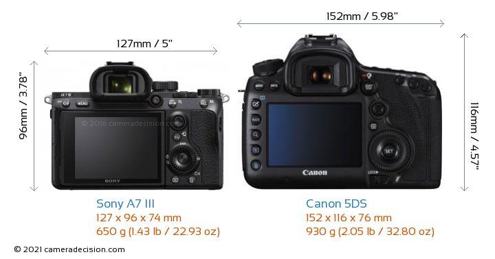 Sony A7 III vs Canon 5DS Camera Size Comparison - Back View
