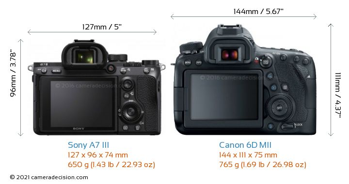 Sony A7 III vs Canon 6D MII Camera Size Comparison - Back View