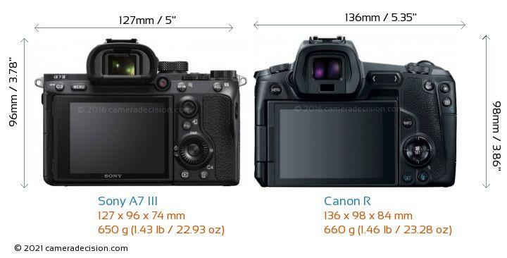 Sony A7 III vs Canon R Camera Size Comparison - Back View