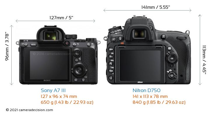 Sony A7 III vs Nikon D750 Camera Size Comparison - Back View