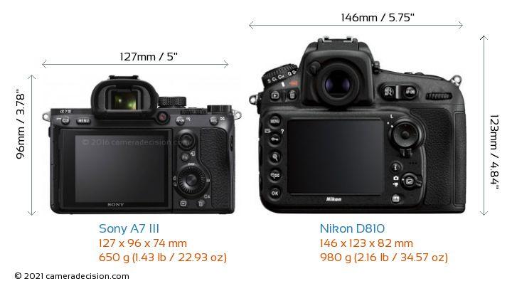 Sony A7 III vs Nikon D810 Camera Size Comparison - Back View