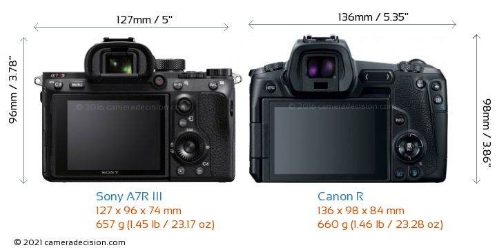Sony A7R III vs Canon R Camera Size Comparison - Back View