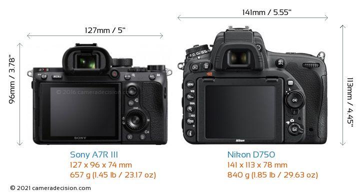 Sony A7R III vs Nikon D750 Camera Size Comparison - Back View