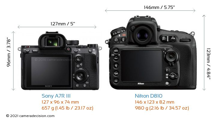 Sony A7R III vs Nikon D810 Camera Size Comparison - Back View