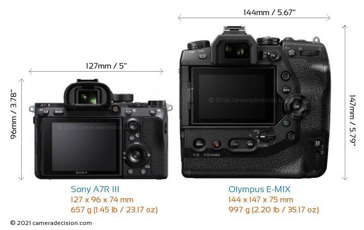 Sony A7R III vs Olympus E-M1X Camera Size Comparison - Back View