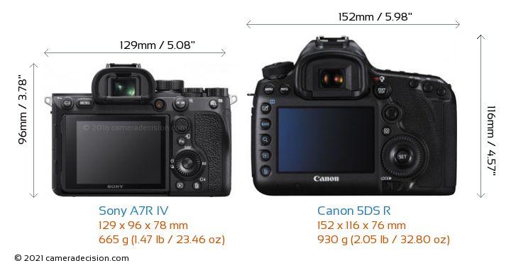 Sony A7R IV vs Canon 5DS R Camera Size Comparison - Back View