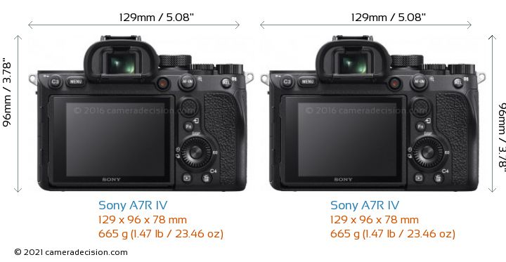Sony A7R IV vs Sony A7R IV Camera Size Comparison - Back View