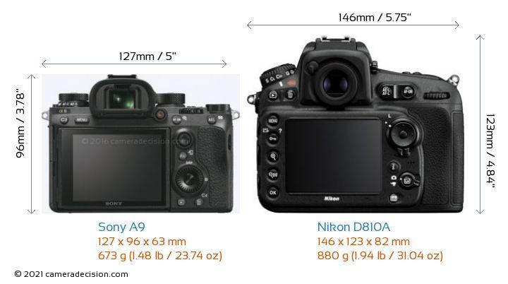 Sony A9 vs Nikon D810A Camera Size Comparison - Back View