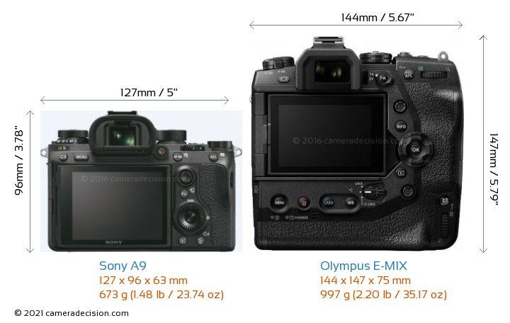 Sony A9 vs Olympus E-M1X Camera Size Comparison - Back View