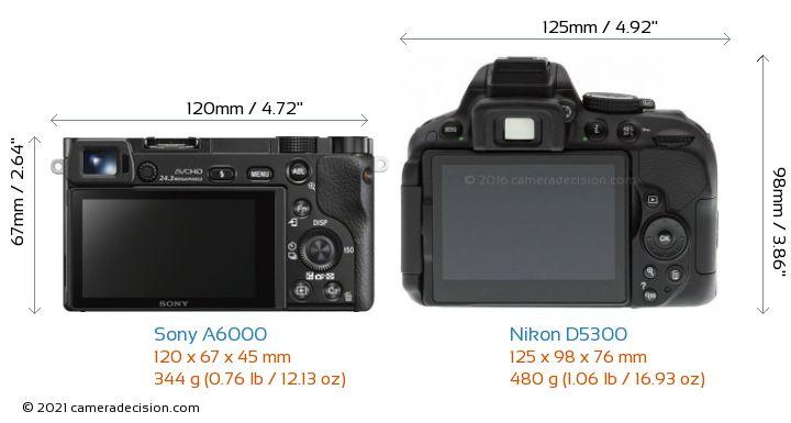 Sony A6000 vs Nikon D5300 Camera Size Comparison - Back View