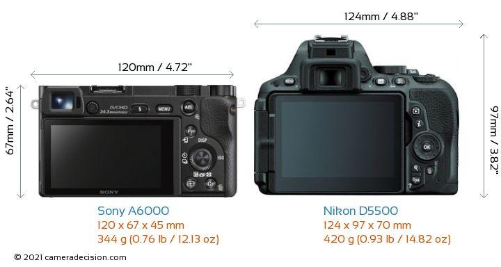 Sony A6000 vs Nikon D5500 Camera Size Comparison - Back View
