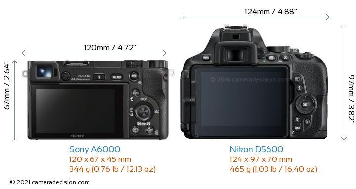 Sony A6000 vs Nikon D5600 Camera Size Comparison - Back View