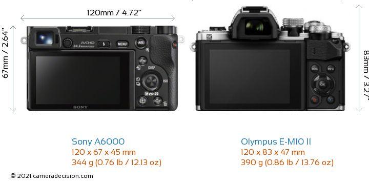 Sony A6000 vs Olympus E-M10 II Camera Size Comparison - Back View