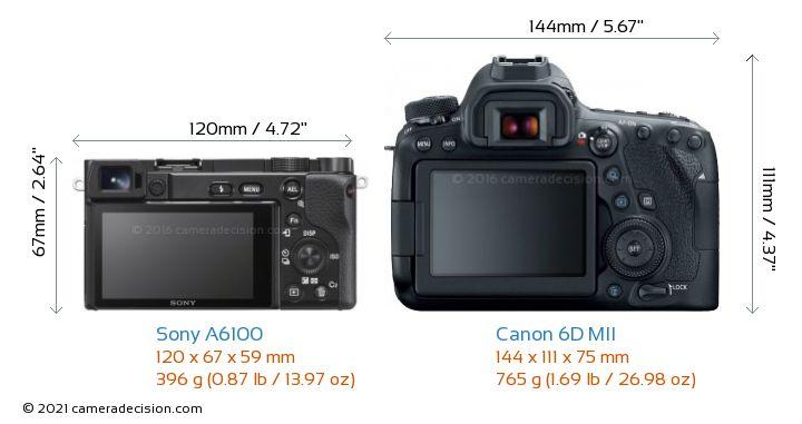 Sony A6100 vs Canon 6D MII Camera Size Comparison - Back View