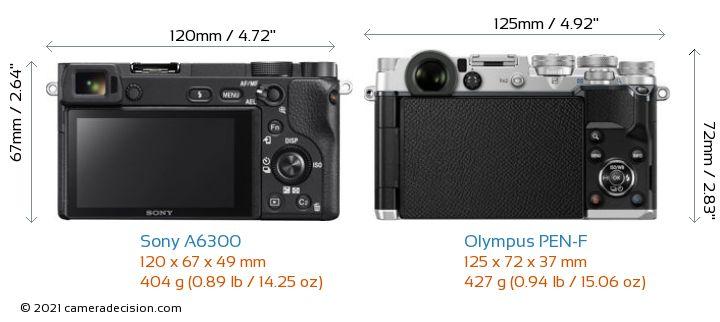 Sony A6300 vs Olympus PEN-F Camera Size Comparison - Back View