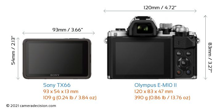 Sony TX66 vs Olympus E-M10 II Camera Size Comparison - Back View
