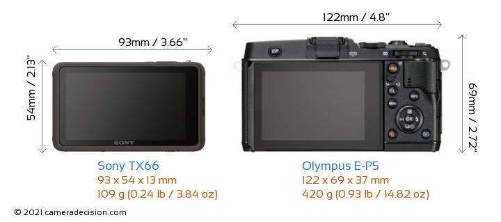 Sony TX66 vs Olympus E-P5 Camera Size Comparison - Back View