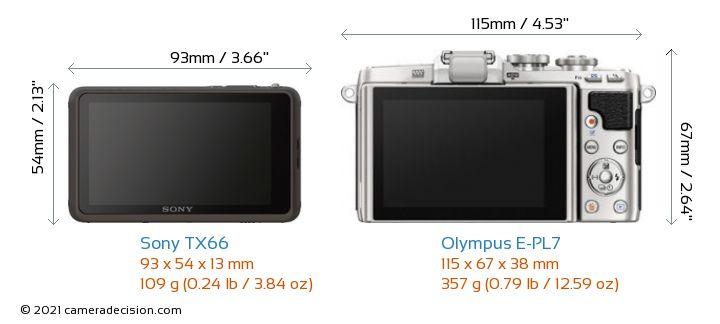 Sony TX66 vs Olympus E-PL7 Camera Size Comparison - Back View