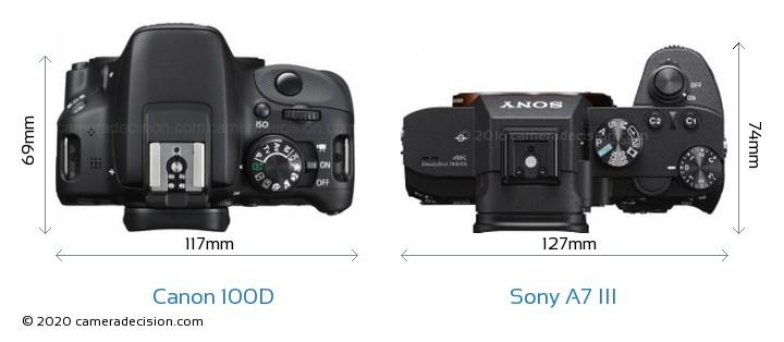 Canon 100D vs Sony A7 III Camera Size Comparison - Top View