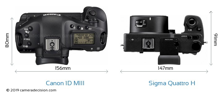 Canon 1D MIII vs Sigma Quattro H Camera Size Comparison - Top View