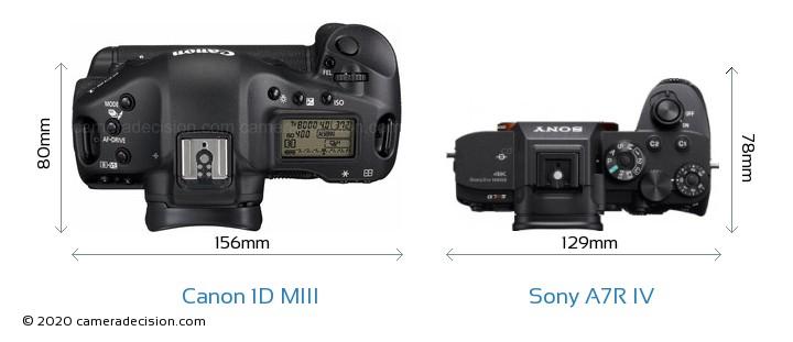 Canon 1D MIII vs Sony A7R IV Camera Size Comparison - Top View