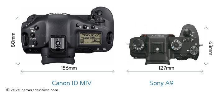 Canon 1D MIV vs Sony A9 Camera Size Comparison - Top View