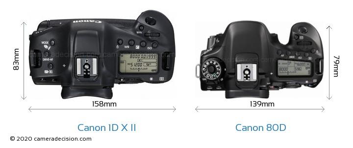 Canon 1D X II vs Canon 80D Camera Size Comparison - Top View