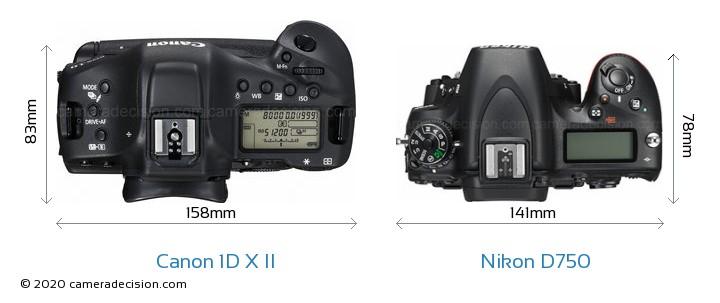 Canon 1D X II vs Nikon D750 Camera Size Comparison - Top View