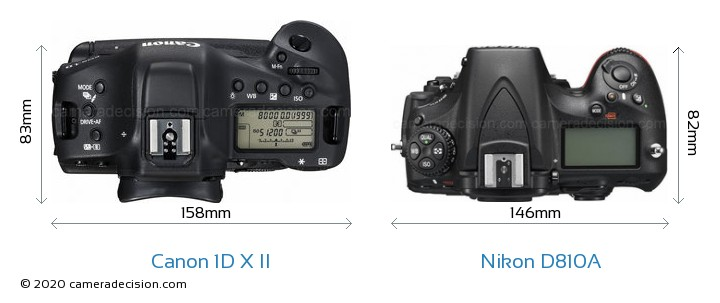 Canon 1D X II vs Nikon D810A Camera Size Comparison - Top View