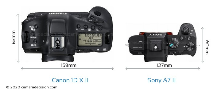 Canon 1D X II vs Sony A7 II Camera Size Comparison - Top View