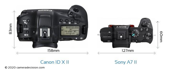 Canon 1D X II vs Sony A7 II Camera Size Comparison - Top View